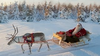 Santa Claus And Reindeer On The Road   Lapland Finland Rovaniemi: Real Father Christmas For Families