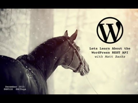 Lets Learn About the WordPress REST API