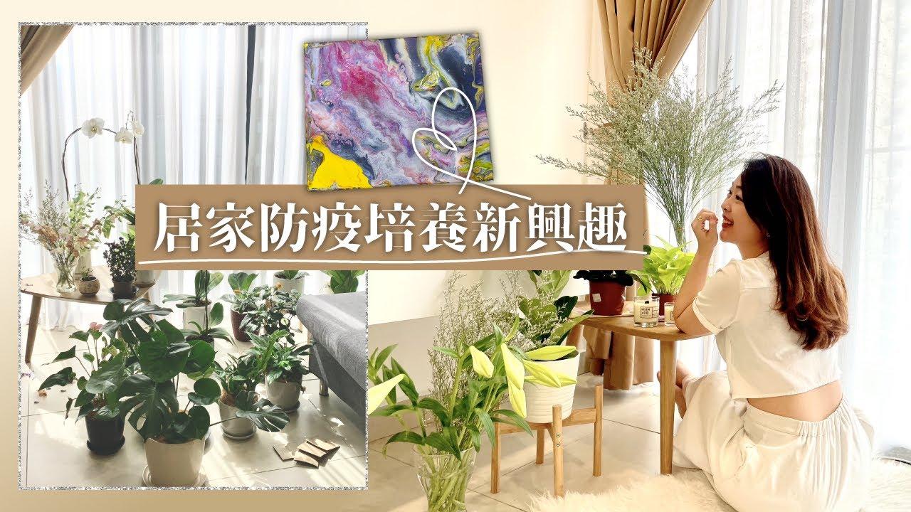居家防疫生活不無聊|自己種植物把窗邊角落變成咖啡廳/療癒的流動畫/推薦最近看的幾本書