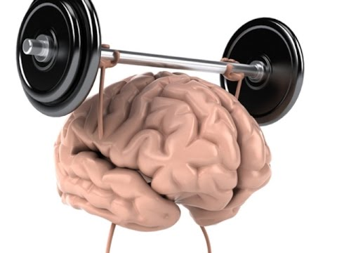 muscle memory research paper The journal of applied research in memory and cognition (jarmac) publishes a mix of empirical reports, review articles, and target papers with.