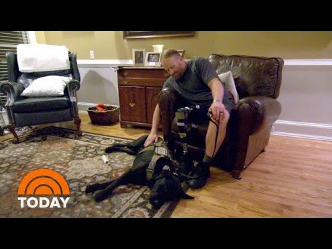 man's-best-friend:-how-a-dog-helped-this-wounded-veteran-find-hope-|-today