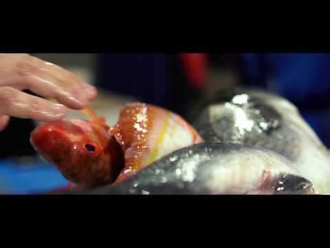 BonBon - Taste Something Fresh - One Michelin Star Restaurant