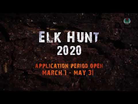 On The Hunt: Wisconsin Elk
