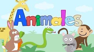 Niño de Papel | Animales