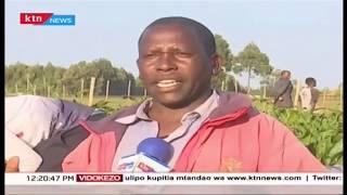 Wakulima wa North Rift wakasirishwa na makadirio ya bajeti, wasema wamesahauliwa