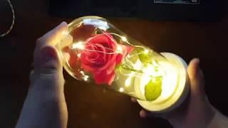 роза в стеклянной колбе с подсветкой с Aliexpress