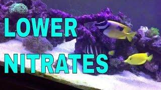 How I'm lowering nitrates in the 125 gallon saltwater aquarium