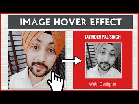 Image Hover Effect With HTML And CSS For Website
