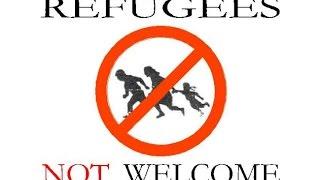 Mehr Ausländer - Mehr Dummheit?