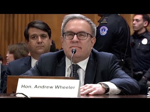 The Fox in Charge of the Henhouse: Activists Decry Trump's EPA Pick, Coal Lobbyist Andrew Wheeler