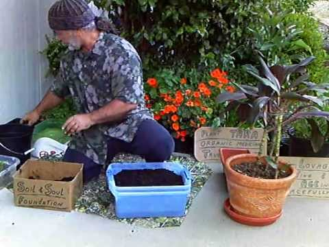 Organic Gardening Foundation, Simple, Efficient, Sustainable, Wonderful, Earth, Worms,