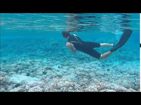 Fakarava - Snorkeling à Tetamanu
