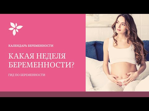 Какая Неделя Беременности ? Как Узнать Срок Беременности 🤰