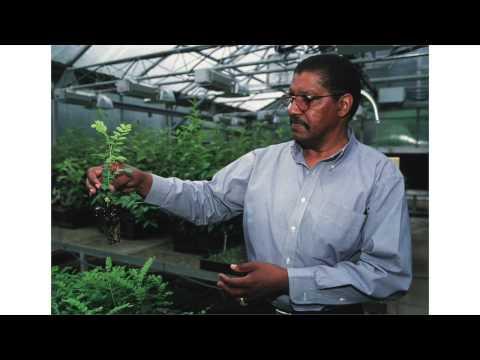 Flora's Organics
