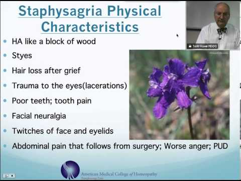 Staphysagria: Homeopathic Medicine -Tips For Beginners
