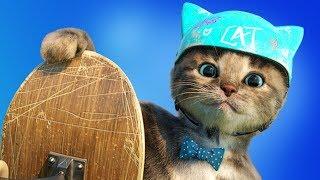 Fun Pet Kitten Care Games - Little Kitten Preschool Learning Puzzles & Animals Mini Games Kids Apps