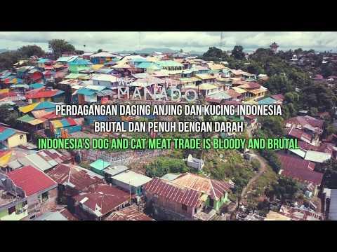 North Sulawesi's Brutal Live Animal Markets