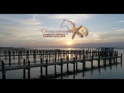 We'll Be Waiting For You - Chincoteague Island, VA