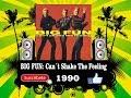 Big Fun - Can´t shake the Feeling  (Radio Version)