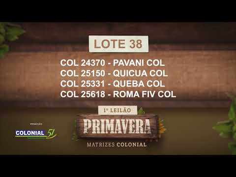 LOTE 38   COL 24370,25150,25331,25618
