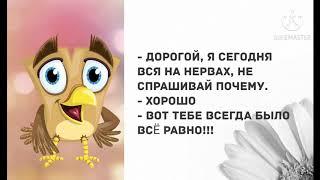 Сборник смешных АНЕКДОТОВ. Смех! Юмор! Позитив!