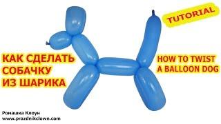 СОБАЧКА ИЗ ДЛИННОГО ШАРИКА ШДМ как сделать своими руками How to Make a Dog With Twisting Balloon(Привет, друзья! Сегодня делаем собачку из длинного воздушного шарика ШДМ (шара для моделирования) (How to Make..., 2015-04-02T15:59:28.000Z)