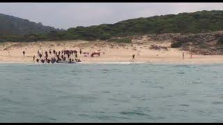 מהגרים מגיעים לחוף העיירה טריפה ב ספרד ובורחים מהמשטרה