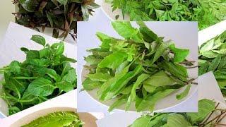 Вьетнамская и азиатская зелень и как ее есть Вьетнамская кухня Ч1 обзор зелени