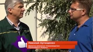 Передача СДЕЛАНО НА КУБАНИ телерадиокомпании Кубань 24