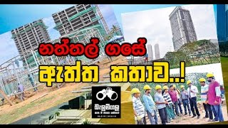 Balumgala - world's tallest christmas Tree in sri lanka - 07th December 2016
