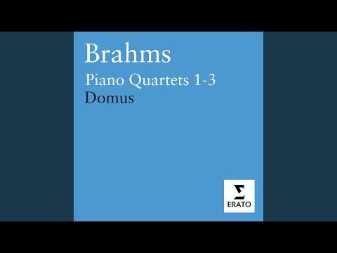 Piano Quartet No. 1 in G minor Op. 25: III. Andante con moto - Animato