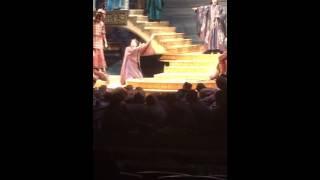 """Turandot-Liù:"""" Tanto amore segreto...tu che di gel sei cinta"""" Donata D'Annunzio Lombardi LIVE 2015"""
