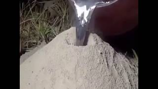 Inside ANT colony filled with melted metal surprising inside structure