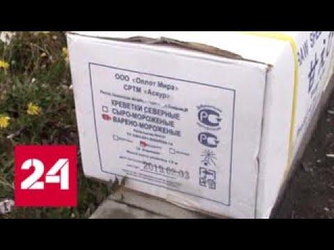 В Красноярском крае пресечен канал поставки незаконно добытой осетровой икры - Россия 24