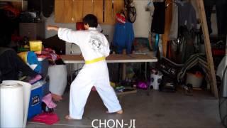 West Coast Taekwondo White Belt & Yellow Belt Forms & One Steps