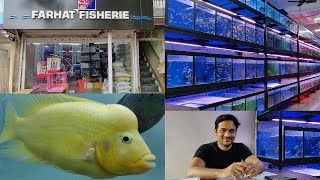Farhat Fisheries Aquarium Fish Store Kurla