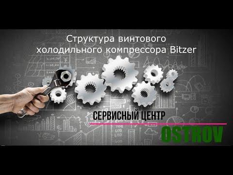 Структура винтового компрессора Bitzer СSH