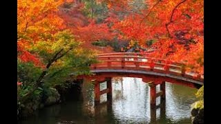 Relaxing Music ~ 2 ~ Soothing Pictures ~ Zen Garden ~ Feng Shui