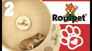 Hamster Laufrad 🎅 2. Advent-Verlsoung ♥ Miyuki Tiervideos mit Herz♥