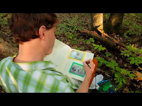 The Nature of God: Make a Nature Journal