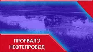 Нефтепровод «Транснефти» прорвало в Самарской области(Нефтепровод «Транснефти» прорвало в Самарской области http://lifenews.ru/news/157118 В Кинельском районе Самарской..., 2015-07-10T19:45:14.000Z)
