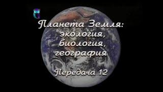 Передача 12. Экосистемы широколиственных и смешанных лесов. Часть 3