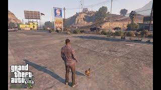 МОДЫ GTA 5: Animal Ark Shelter УСТАНОВКА. ЗООМАГАЗИН В GTA 5