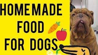 Best Homemade Food for Dogs | Homemade Dog Treats | Anupma Pandey