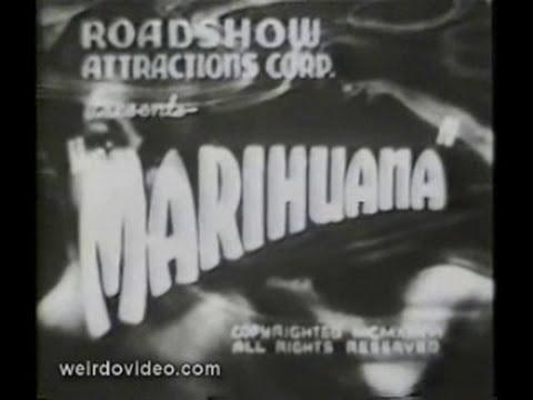 Trailer:  Marihuana - 1936