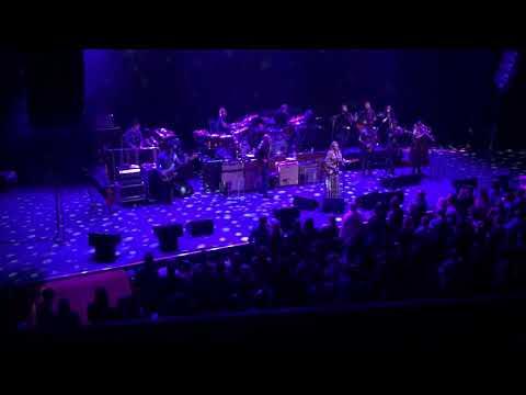 Tedeschi Trucks Band Chicago Theatre January 18, 2020: Midnight in Harlem