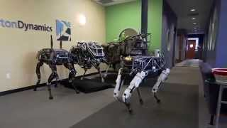 Future of robotics - Boston Dynamics