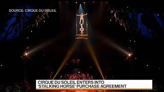 Cirque Du Soleil Survival After Bankruptcy Is Guaranteed, Ceo Says