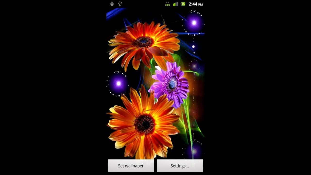 Dancing Flowers Live Wallpaper Android Market - YouTube