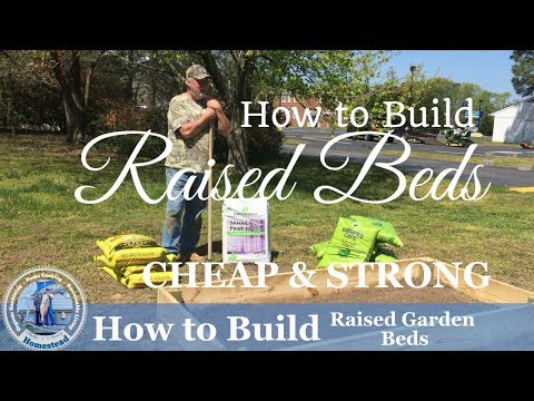 How To Build Raised Garden Bed -  (CHEAP & STRONG)